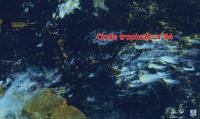 Une onde tropicale affectera les îles du Nord entre mercredi et samedi
