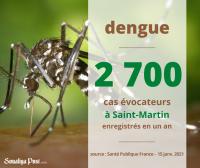 Trois foyers épidémiques actifs de dengue  à Saint-Martin